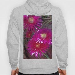 Bright pink flowers Hoody