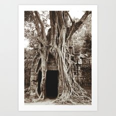 Angkor Temple Ta Prohm Siem Reap Cambodia BW Art Print