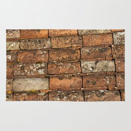 Red Tile Roof Rug