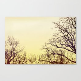 What a feeling Canvas Print