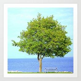 Big Green Tree By The Lake Art Print