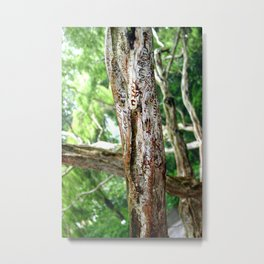 Friendship is Freedom - Singapure Metal Print