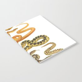 white snakes Notebook