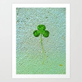 You must be my lucky star! Art Print