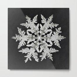 Wilson Bentleys Snowflake 920 (ca 1890) detailed photograph of snowflakes in high resolution by Wils Metal Print