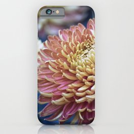Longwood Gardens Autumn Series 278 iPhone Case
