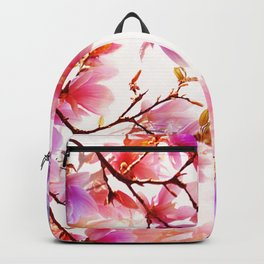 Spring 331 Backpack