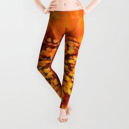 A March 1st Colorburst Leggings