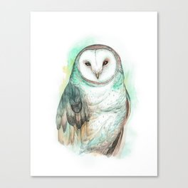 Owl Watercolor painting Canvas Print