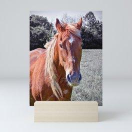 Horse Portrait Mini Art Print