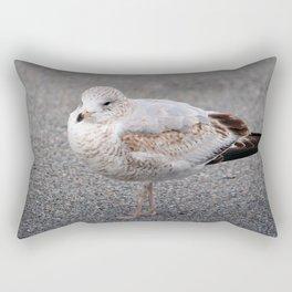 Ring Billed Gull Rectangular Pillow