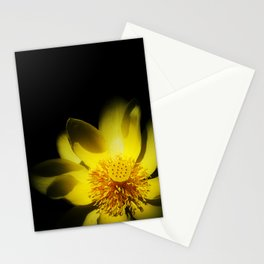 yelo Stationery Cards