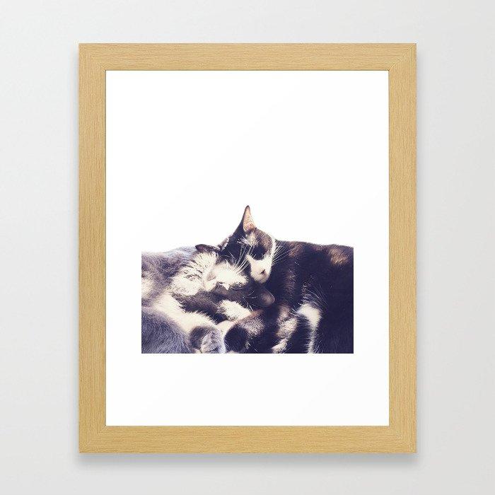 Cats again Framed Art Print