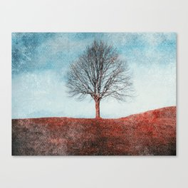 winter moments Canvas Print
