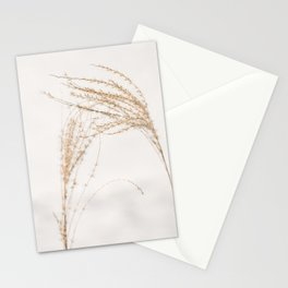 Plumes of ornamental grass 'Miscanthus Sinensis Silberfeder' in the snow. Stationery Cards