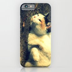 Tabby iPhone 6s Slim Case