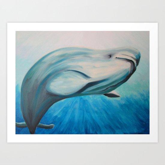 Beluga Art Print