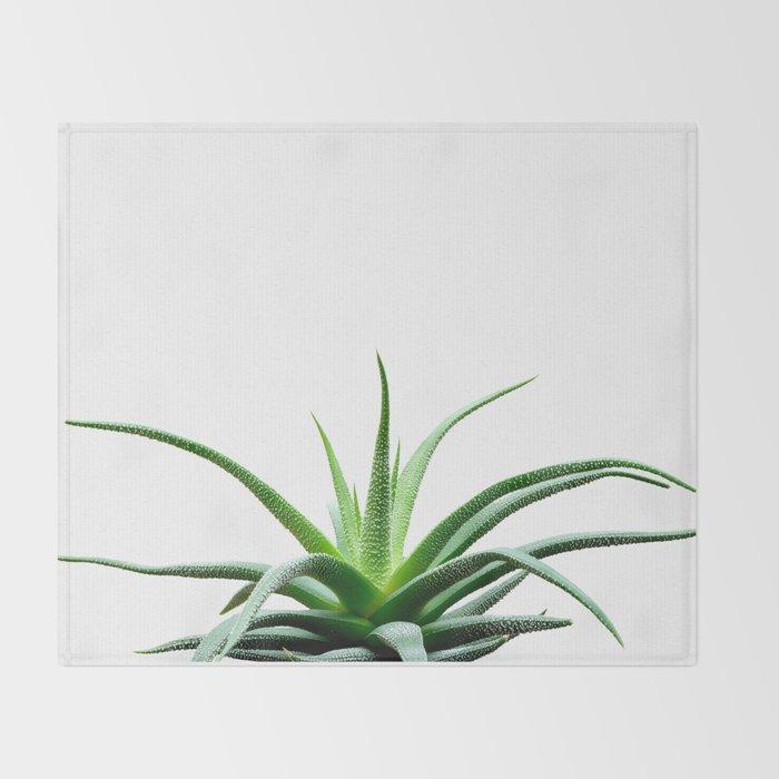 Succulents - Haworthia attenuata - Plant Lover - Botanic Specimens delivering a fresh perspective Throw Blanket