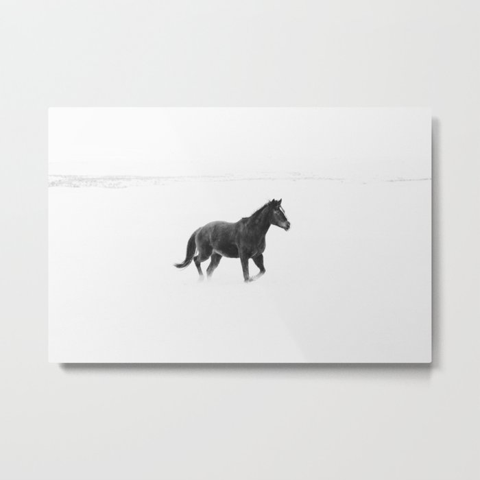 Running Horse in Black and White Metal Print