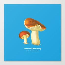 Farm the World - Russula Aurata Mushroom Canvas Print