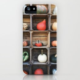 Grid of Gourds iPhone Case
