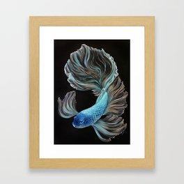 Little BetaBlue Framed Art Print