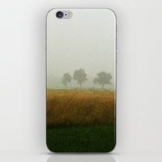 Brumes iPhone & iPod Skin