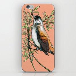Coraya Wren iPhone Skin