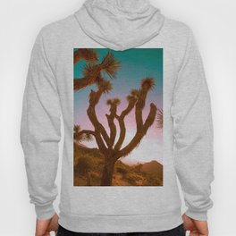 Joshua Tree Desert Sunset Hoody