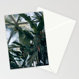 Tropical Dome Stationery Cards