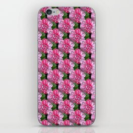 Camelias iPhone Skin