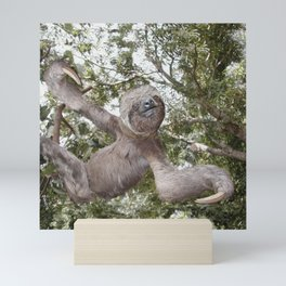 Sloth, A Real Tree Hugger Mini Art Print