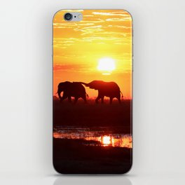 Elephants in The Sunset iPhone Skin