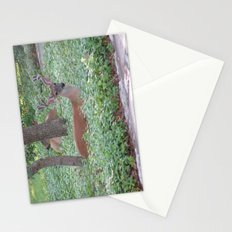 Here's Looking at You! Stationery Cards