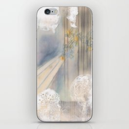 Pennies and Youth (The Sweven Project) iPhone Skin