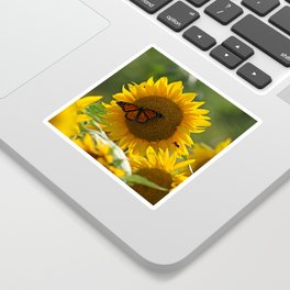 The butterfly the bee and the sunflower Sticker