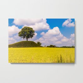 Spring in the fields of Italy Metal Print