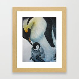 Victoria Land  Framed Art Print