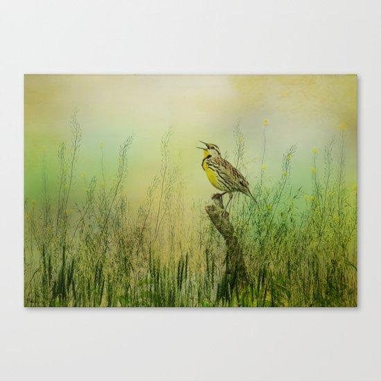 The Meadow Lark Sings Canvas Print