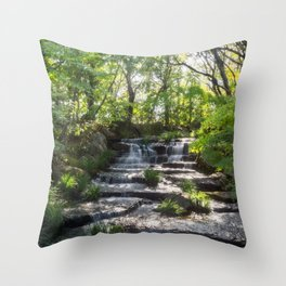 Beautiful Stream in a Japanese Garden in Himeji, Japan. Throw Pillow