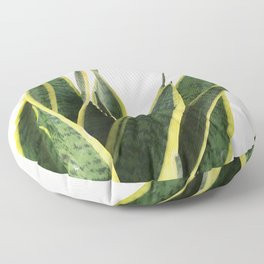 Sansevieria Floor Pillow