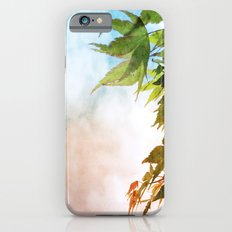 Maple iPhone 6s Slim Case