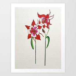 The Red Columbine Art Print Art Print