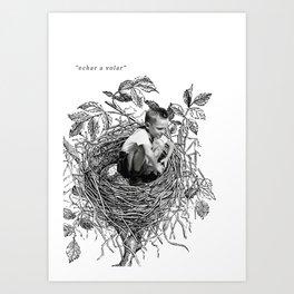 echar a volar Art Print