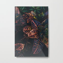 Dark Vibrance Metal Print