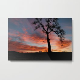 Beautiful Oak Tree In Colorful Southwestern Red, Yellow and Blue Sunrise Metal Print