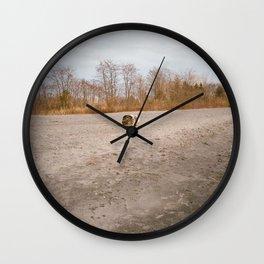 BEACHED LOG Wall Clock