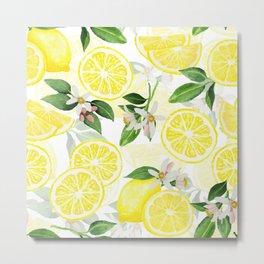 mediterranean summer lemon fruits on white Metal Print
