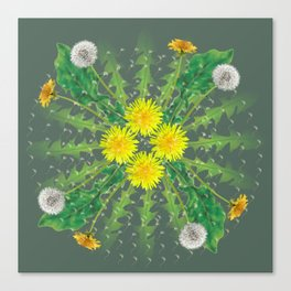 Dandelion Cycle Canvas Print