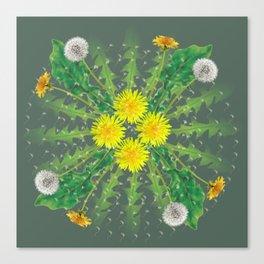 Dandelion Cycle Canvas Print